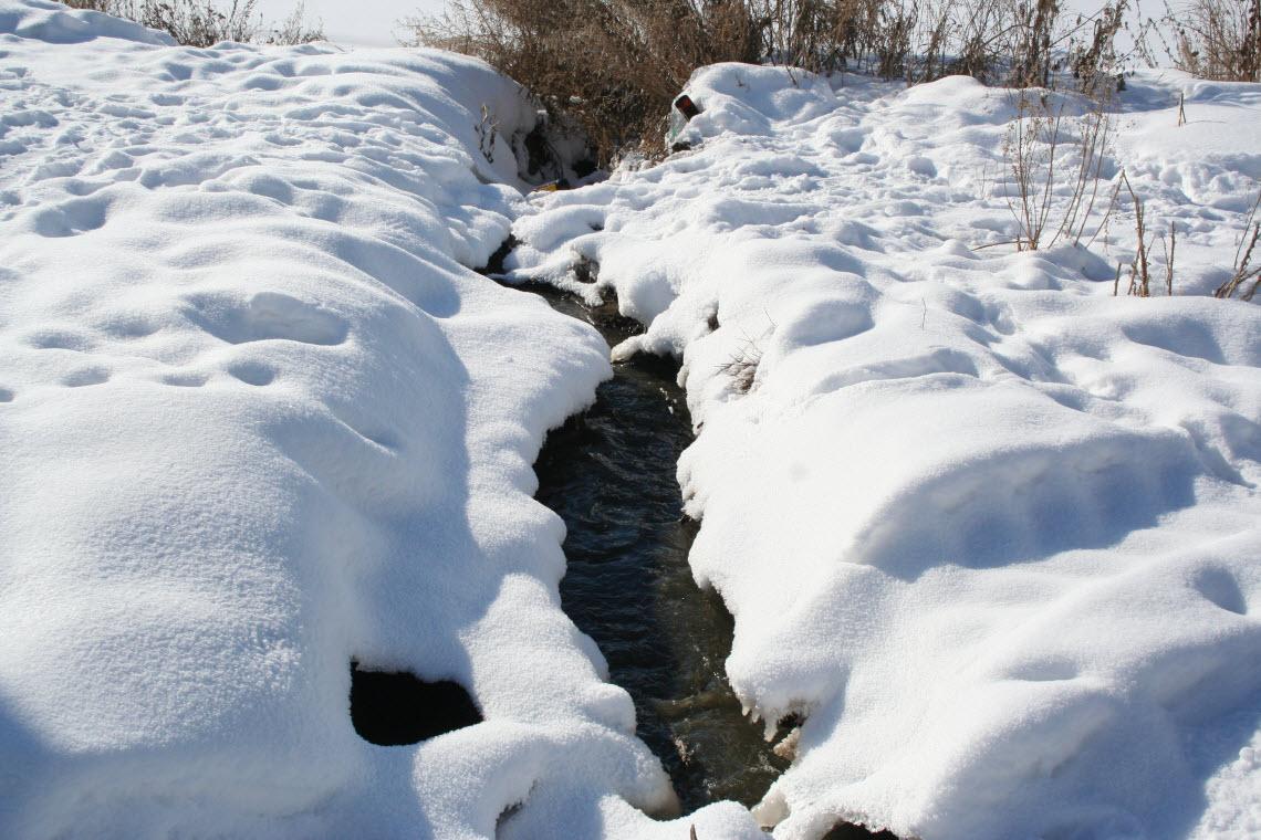 после открытки бегут ручьи слышали природном