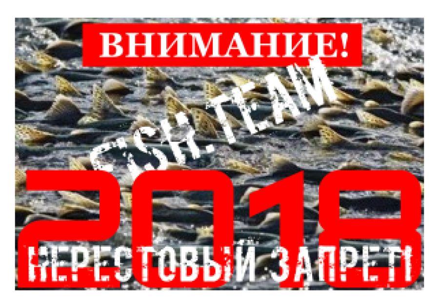 Запрет ловли рыбы 2017 санкт-петербург