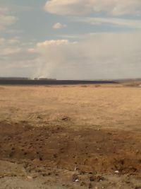 В Уйском районе произошел крупный лесной пожар